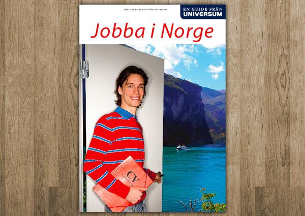 Jobba i Norge 2007